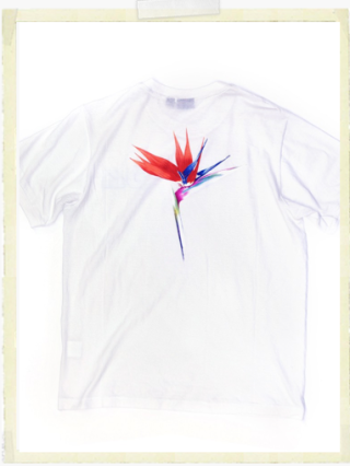 Cosmopola - Spring has sprung - T Shirts by